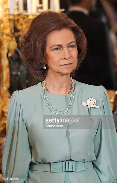 Queen Sofia of Spain receives foreign ambassadors at The Royal Palace on January 18 2011 in Madrid Spain