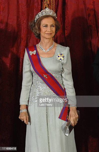 HM Queen Sofia poses for photographers during the Gala Dinner in honour of Romanian President Traian Basescu and his wife Maria at the Royal Palace...