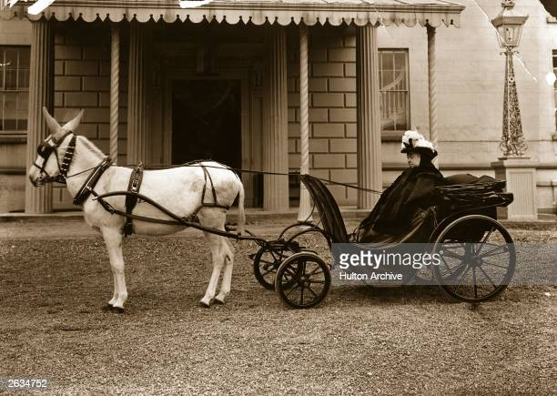Queen Victoria driving a donkey cart during her visit to Monte Carlo