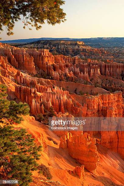 'queen's garden' hoodoos at sunrise. bryce canyon national park, utah - rock hoodoo stock pictures, royalty-free photos & images