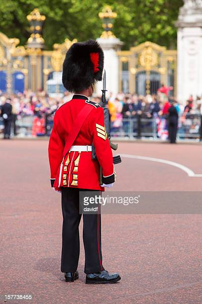 Queens Guard Outside Buckingham Palace