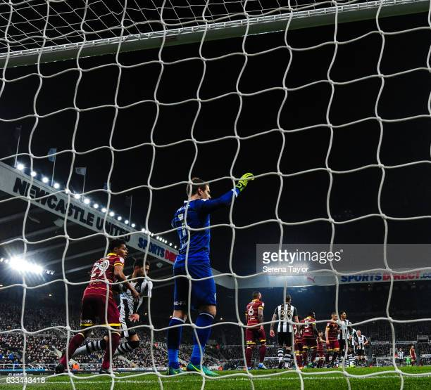 Queens Park Rangers Goalkeeper Alex Smithies stands tall in goal during the Sky Bet Championship match between Newcastle United and Queens Park...