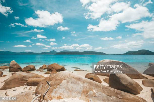 queensland islands - great barrier reef stock pictures, royalty-free photos & images