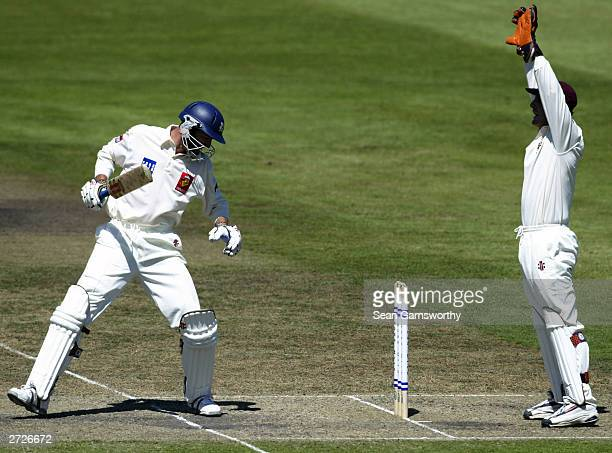 Queensland keeper Wade Seccombe appeals for the wicket of Matthew Elliott of Victoria during the Pura Cup Cricket match between the Victorian...