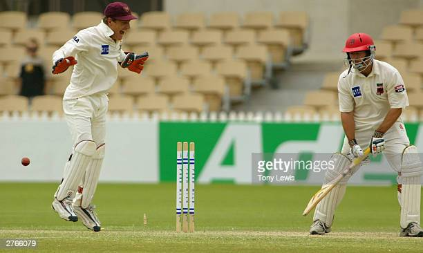 Queensland keeper Wade Seccombe reacts with delight as Nathan Hauritz bowls David Fitzgerald for 24 in the Pura Cup match between the Southern...