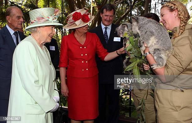 Queensland Premier Anna Bligh shows Queen Elizabeth II a koala during a visit to Rainforest Walk Southbank on October 24 2011 in Brisbane Australia...