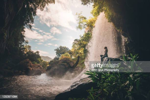 queensland rainforest waterfall girl - falling water flowing water stock pictures, royalty-free photos & images