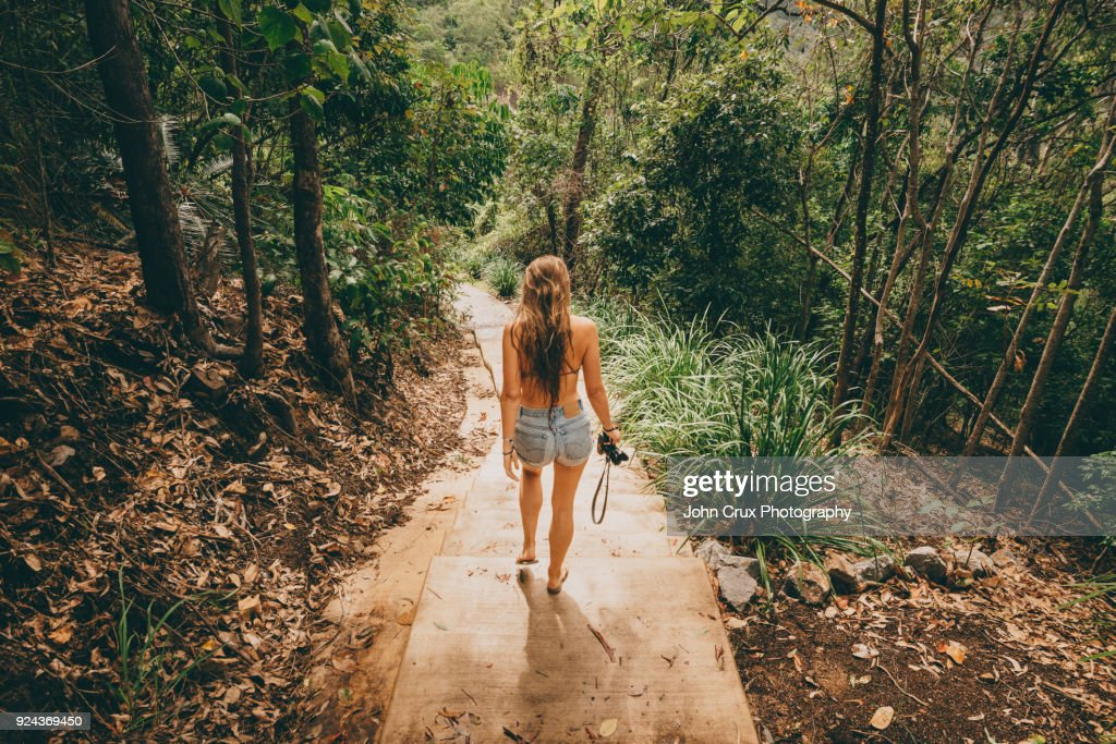 queensland rainforrest tourist : Stock-Foto