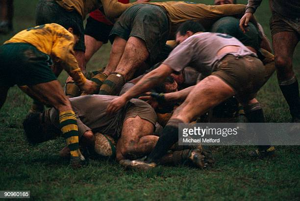 rugby players fight for the ball. - rugby stock pictures, royalty-free photos & images