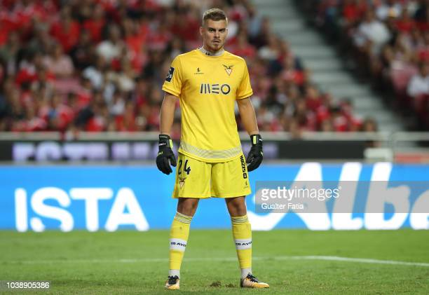 Quentin Beunardeau of Desportivo das Aves in action during the Liga NOS match between SL Benfica and CD Aves at Estadio da Luz on September 23 2018...