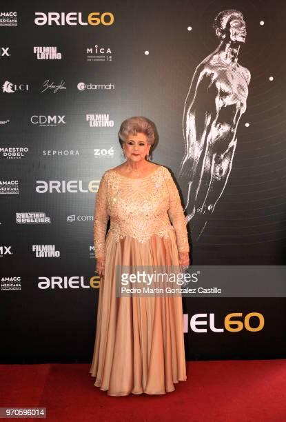 Queta Lavat winner of the 'Ariel de Oro' for his trayectory poses during 60th Ariel Awards at Palacio de Bellas Artes on June 5 2018 in Mexico City...