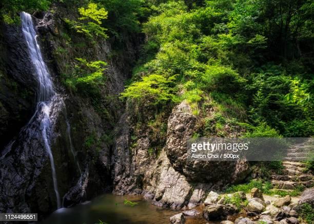 A Quiet Creekside