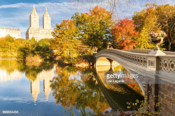 quiet morning in central park, new york - lagarde stock photos and pictures