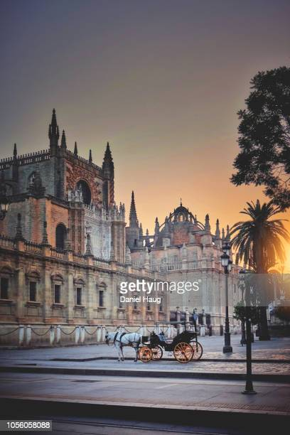 quiet morning in seville as a horse and carriage wait for their first tourist - koets stockfoto's en -beelden