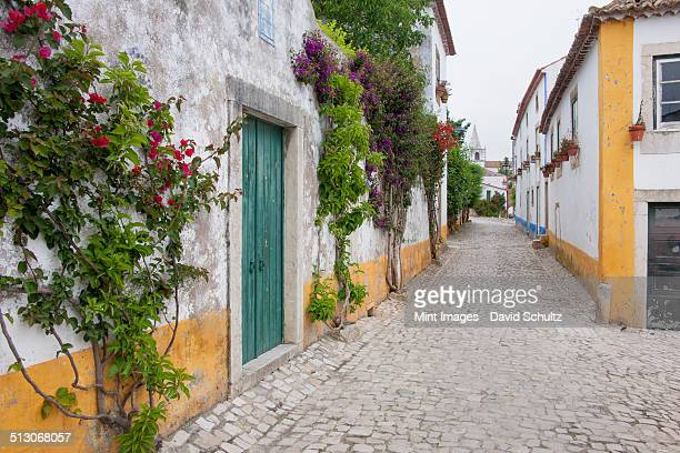 A quiet narrow street of traditional houses in the village of Sonega.