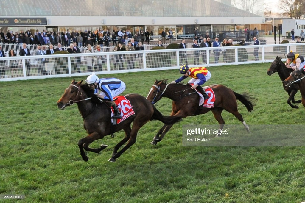 Quilista ridden by Damian Lane wins Beveridge Williams Plate at Caulfield Racecourse on August 19, 2017 in Caulfield, Australia.