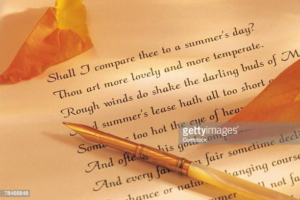 Quill pen and poetry with rose petals