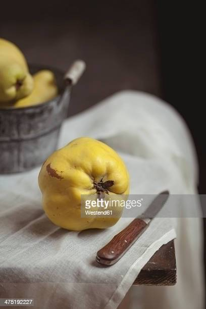 Quince and a knife lying on a table, studio shot