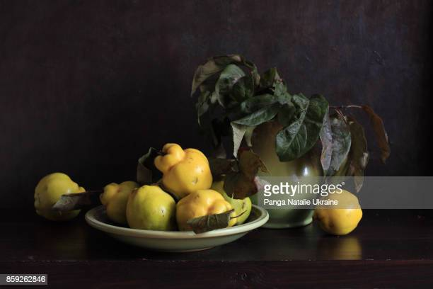 quinces and green apple leaves - nature morte photos et images de collection
