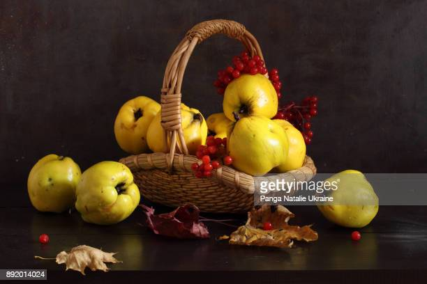 quinces in basket and withered leaves - natureza morta - fotografias e filmes do acervo