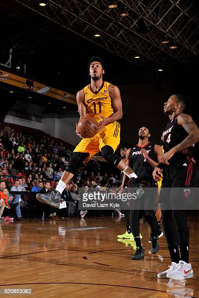Quinn Cook of the Canton Charge drives to the hoop against the Sioux Falls Skyforce at the Canton Memorial Civic Center on April 12 2016 in Canton...