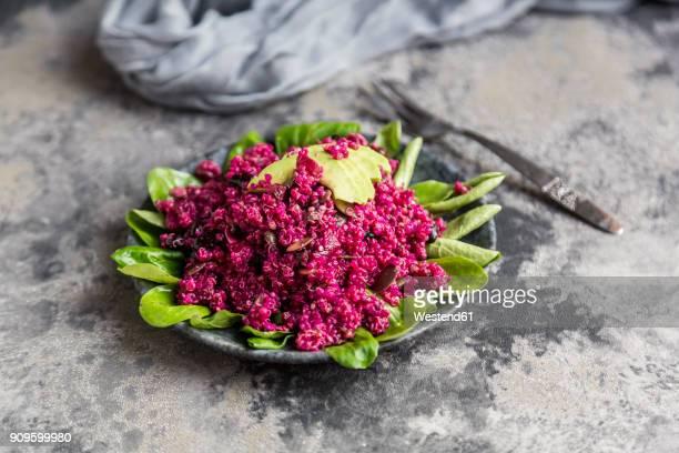 Quinoa salad with beetroot, lamb's lettuce and avocado