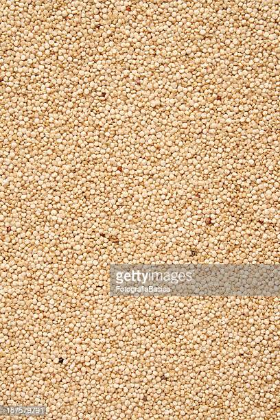 quinoa seeds background - quinoa stock pictures, royalty-free photos & images