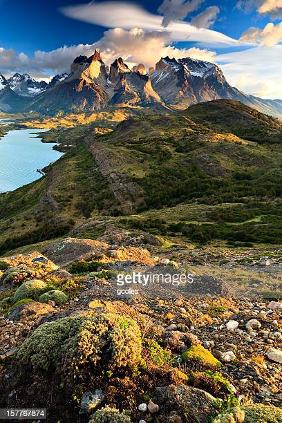 quintessential torres del paine - patagonia chile stock photos and pictures