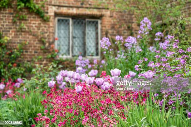 Quintessential vibrant English country garden scene landscape wi