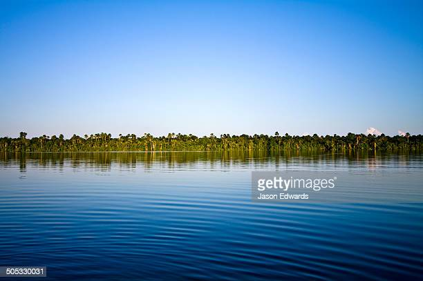 The calm surface of a wide blue lake bordered by the Amazon rainforest on the horizon.