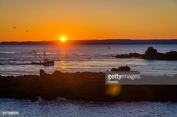 quoddy head, maine - lubec stock photos and pictures
