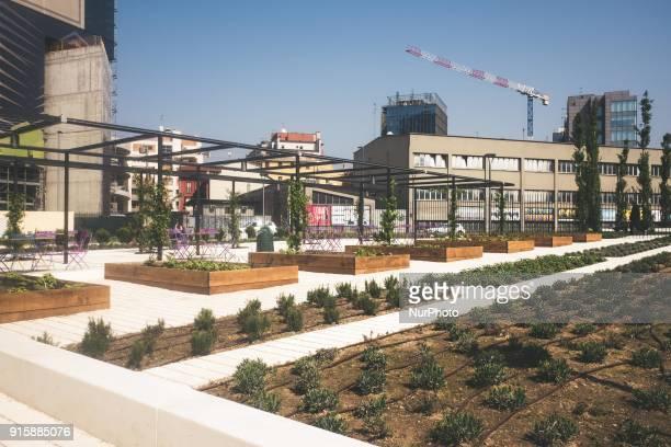 quotBiblioteca degli alberiquot is a new park situated in Gae Aulenti square Miano Italy on June 27 2017