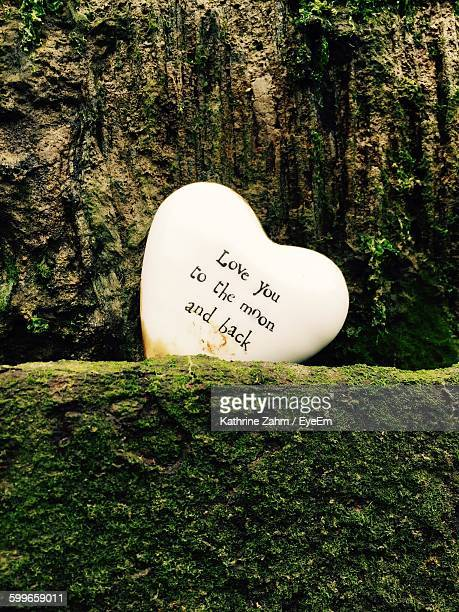 Quotes On Heart Shape By Moss Covered Retaining Wall