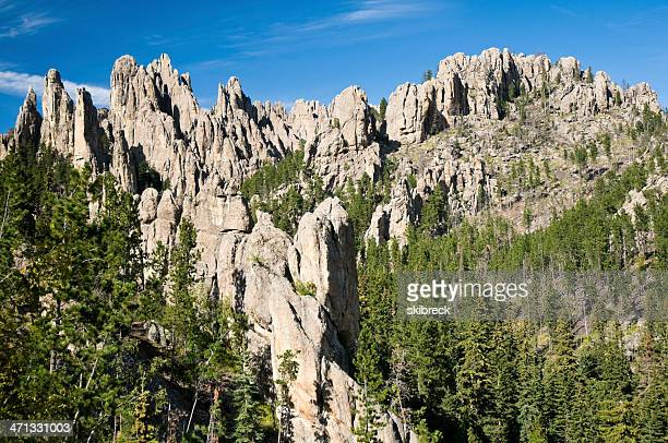 """the needles"" in custer state park, south dakota - black hills stock pictures, royalty-free photos & images"