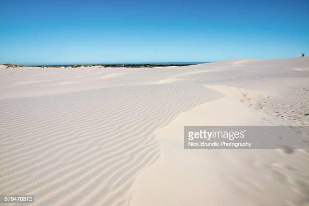 Raabjerg Mile, Sand dune, Skagen - Denmark