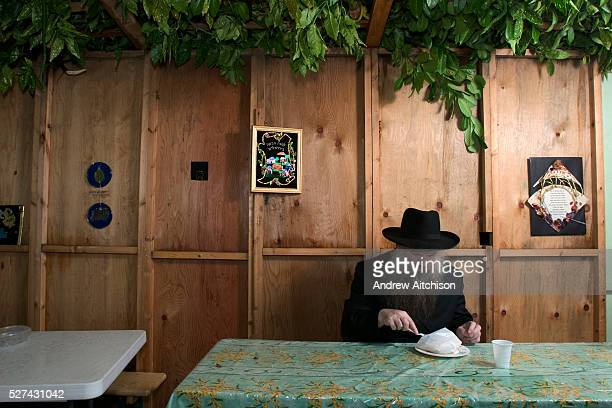 Rabbi Herschel Gluck eating a takeaway meal in his Sukkah during the festival of Sukkot the feast of Tabernacles The holiday commemorates the...
