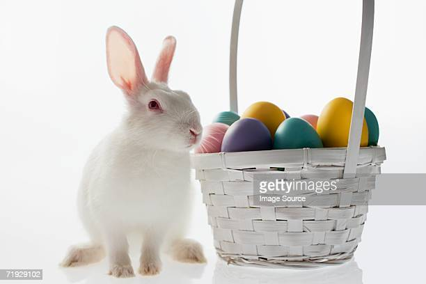 rabbit and basket of eggs - easter bunny stock pictures, royalty-free photos & images