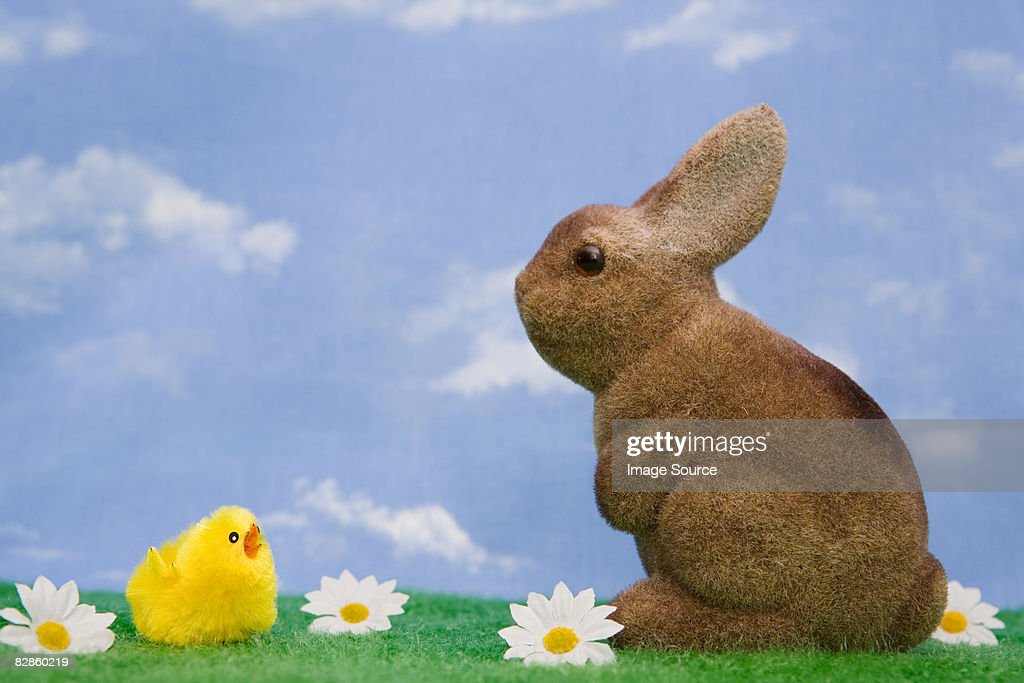 A rabbit and chick : Stock Photo
