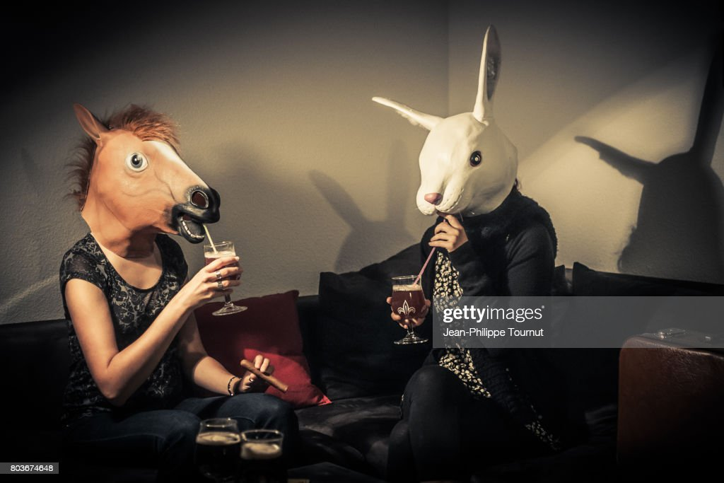 Rabbit and horse drinking together : Stock Photo