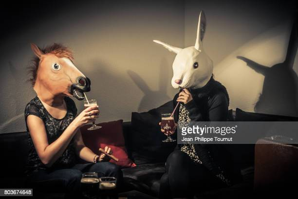 rabbit and horse drinking together - cocktail party stock pictures, royalty-free photos & images