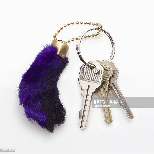 Rabbit foot key chain