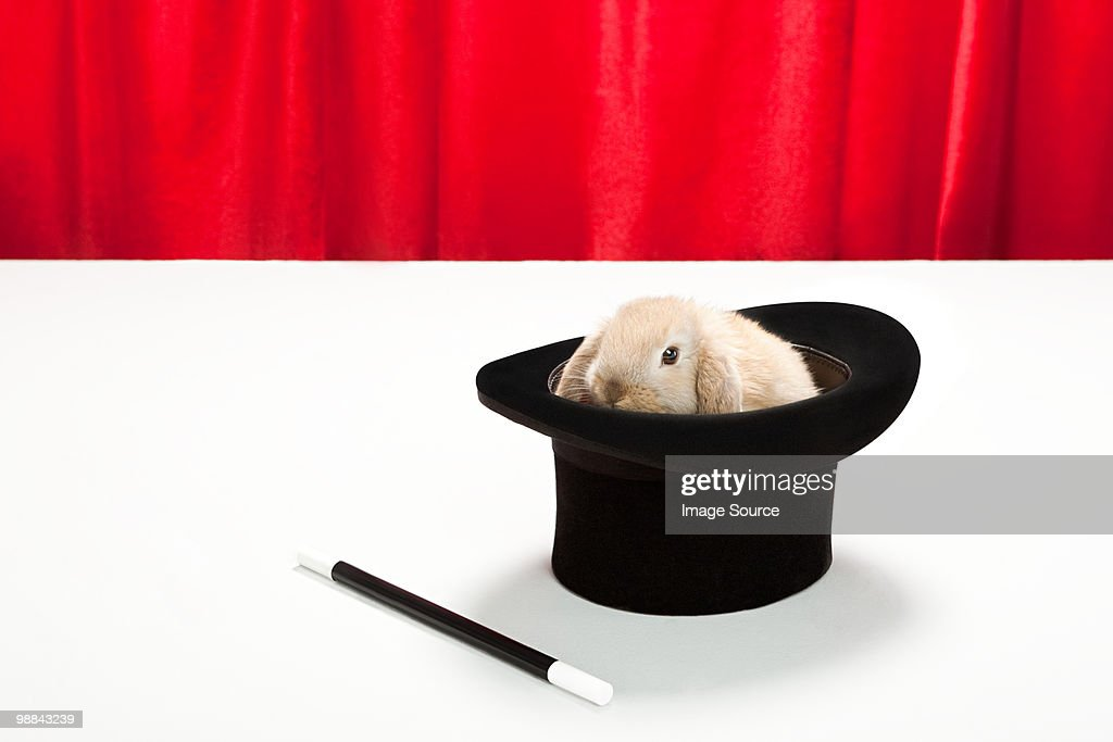 Rabbit in top hat with magic wand : Stock Photo