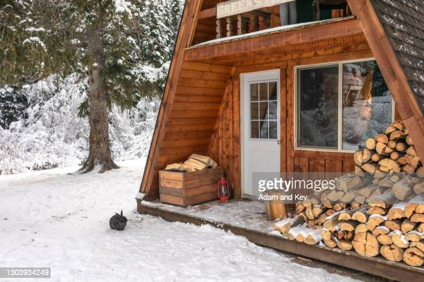 rabbit sits in snow outside a-frame winter cabin - 小屋 ストックフォトと画像