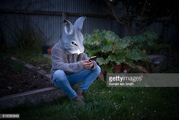 Rabbit using smartphone