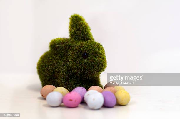 Rabbit with Speckled Easter Eggs