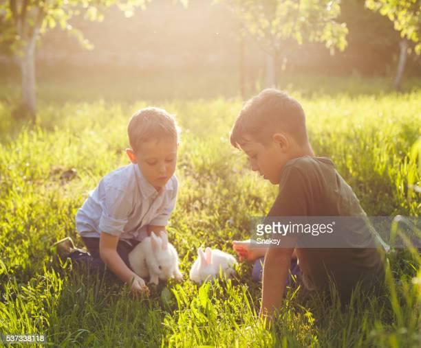 Rabbits and cute boys