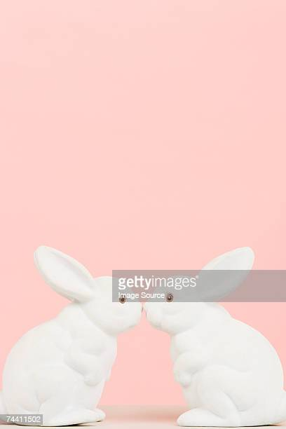 rabbits - white rabbit stock pictures, royalty-free photos & images