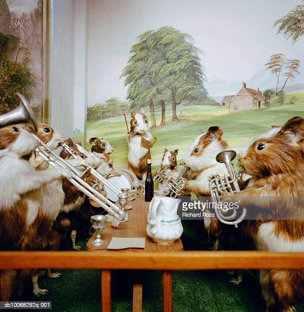 Rabbits with musical instruments
