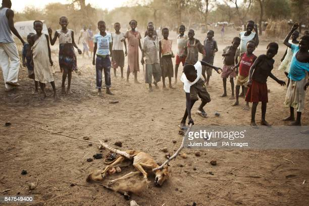 A rabid dog is clubbed and stoned to death by children after it bit someone Doro refugee camp in BunjMaban in the Upper Nile Blue Nile state of...
