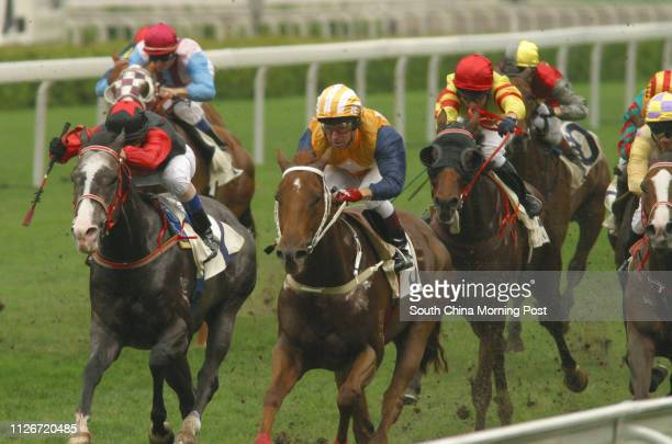 Race 3 No 3 Super Brose ridden by Felix Coetzee wins the 1000m race at Sha Tin Racecourse 18 May 2003